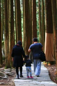 parents and toddler walking in woods