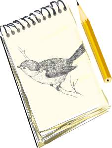 sketchpad with bird drawing