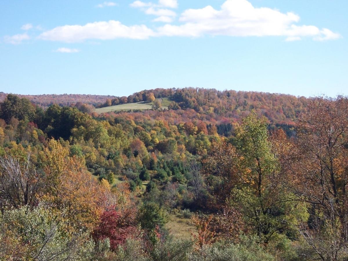 Sullican County PA